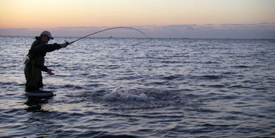 Saltwater Fishing Rods for the Texas Gulf Coast
